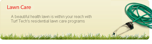Residential and Commercial Lawn Care